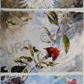 gros-dahlias-aquarelle-Francoise-Dubourg
