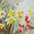 jonquille-narcisse-Pommier-du-Japon-aquarelle-Francoise-Dubourg