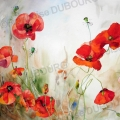 cycle-coquelicot-aquarelle-Francoise-Dubourg