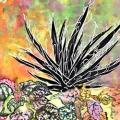 cactus-la-silhouette-Francoise Dubourg
