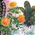 cactus-pompons-Francoise Dubourg