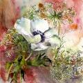 anemone-blanche-aquarelle-Francoise-Dubourg
