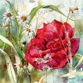 rose-et-marguerites-aquarelle-Francoise-Dubourg