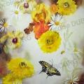 Papillon-survol-aquarelle-Francoise-Dubourg