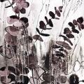 Eucalyptus-Francoise-Dubourg