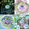 Rose-Bruissement-version6-illustration-numérique-Francoise-Dubourg